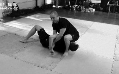 MMA Side Mount aka téčko sekvence