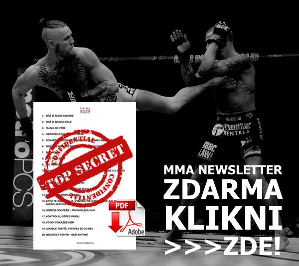 MMA newsletter