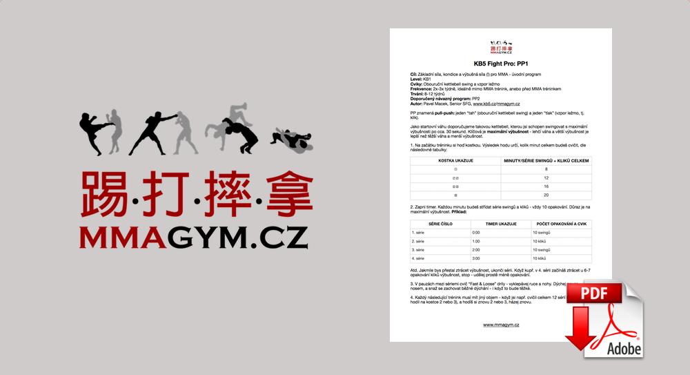 Silová a kondiční příprava pro MMA [program ke stažení v .pdf]